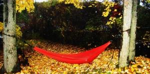 red hammock at dawn