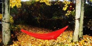 red hammock at dawn