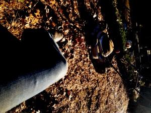 leafmulching